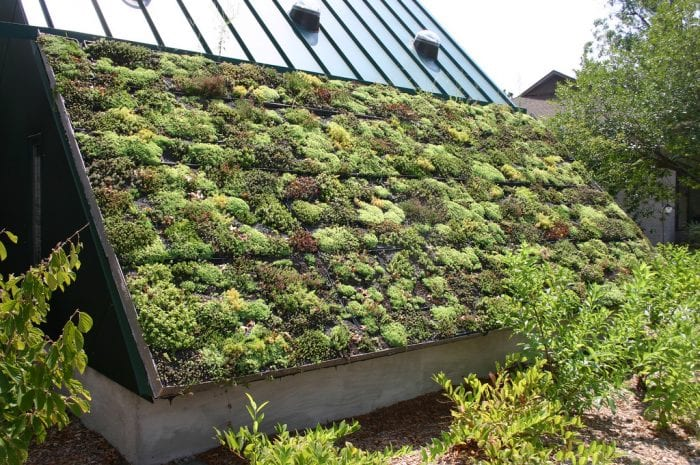 zelena-eko-strecha