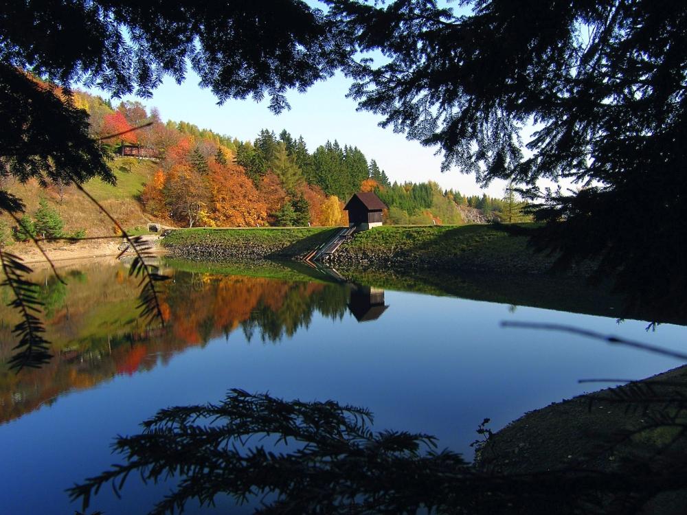 jazero-tajch-priehrada-historia-stromy-jesen-priroda